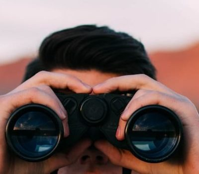 Binoculars for third-party IT assessment